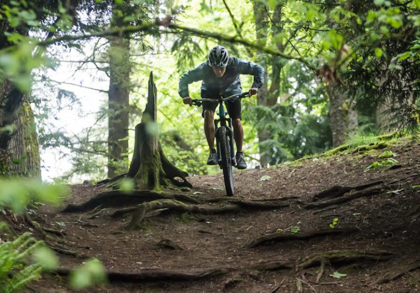 Mountain Biker at top of trail in woods as they ride down