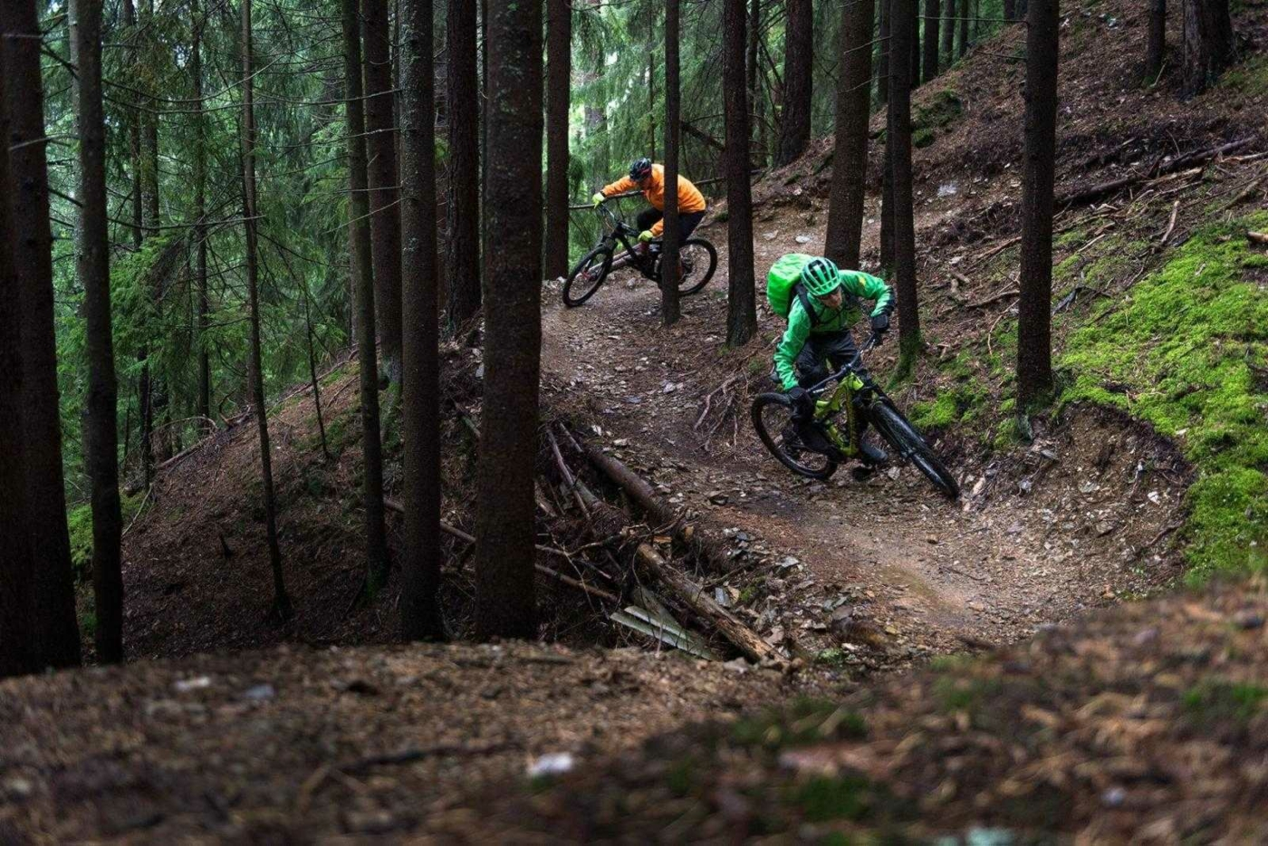 Two mountain bikers riding quickly through a winding forest trail