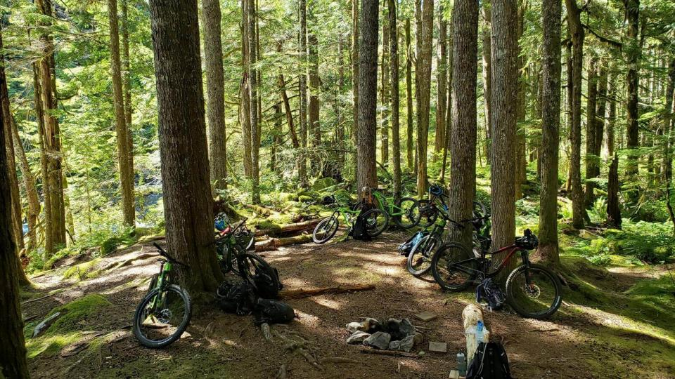 Mountain bikers resting on trail surrounded by tall trees in forest