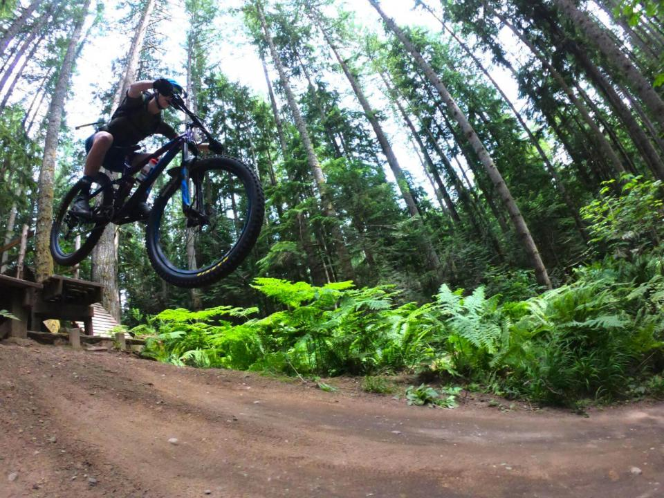 View from below of mountain biker doing a bunny hop on trail in woods