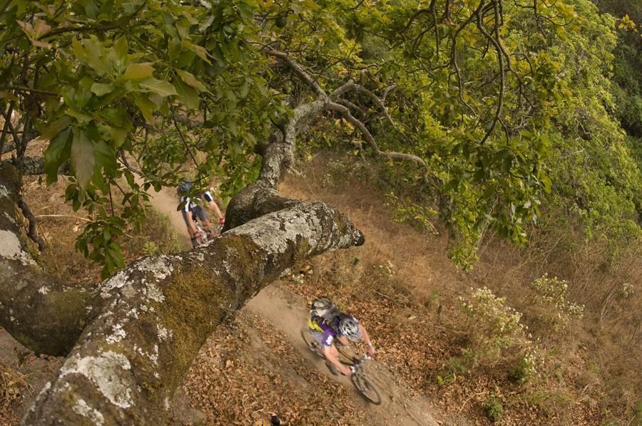 View from above of mountain biker riding quickly on a dirt trail surrounded by low field grass