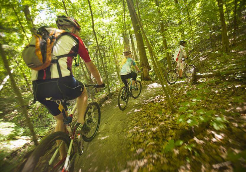 Three people motion blurred as they ride on a trail through bright green forest