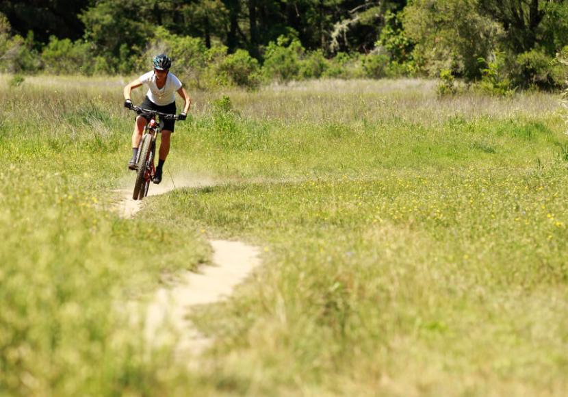 Mountain Biker riding towards camera on narrow dirt trail through field of bright green grass