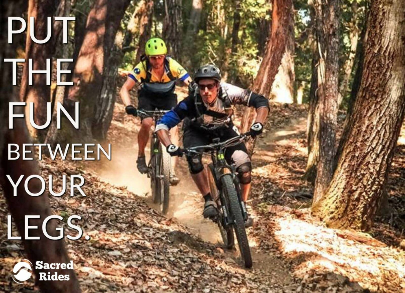 """Two mountain bikers riding a trail through the woods with the words, """"Put the fun between your legs."""""""