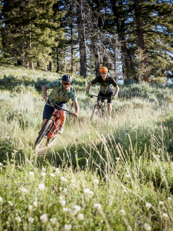 Two mountain bikers riding quickly down trail through grass-covered mountain side