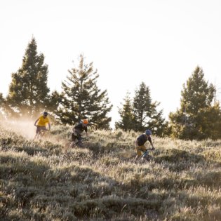 Three mountain bikers racing down grassy mountain hillside in late afternoon