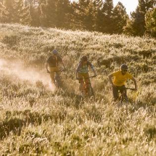 Three mountain bikers racing down grassy hillside with sunset orange glow on landscape