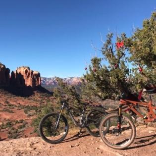 Two mountain bikes parked on red desert gravel. One bike has back wheel resting up in small desert tree